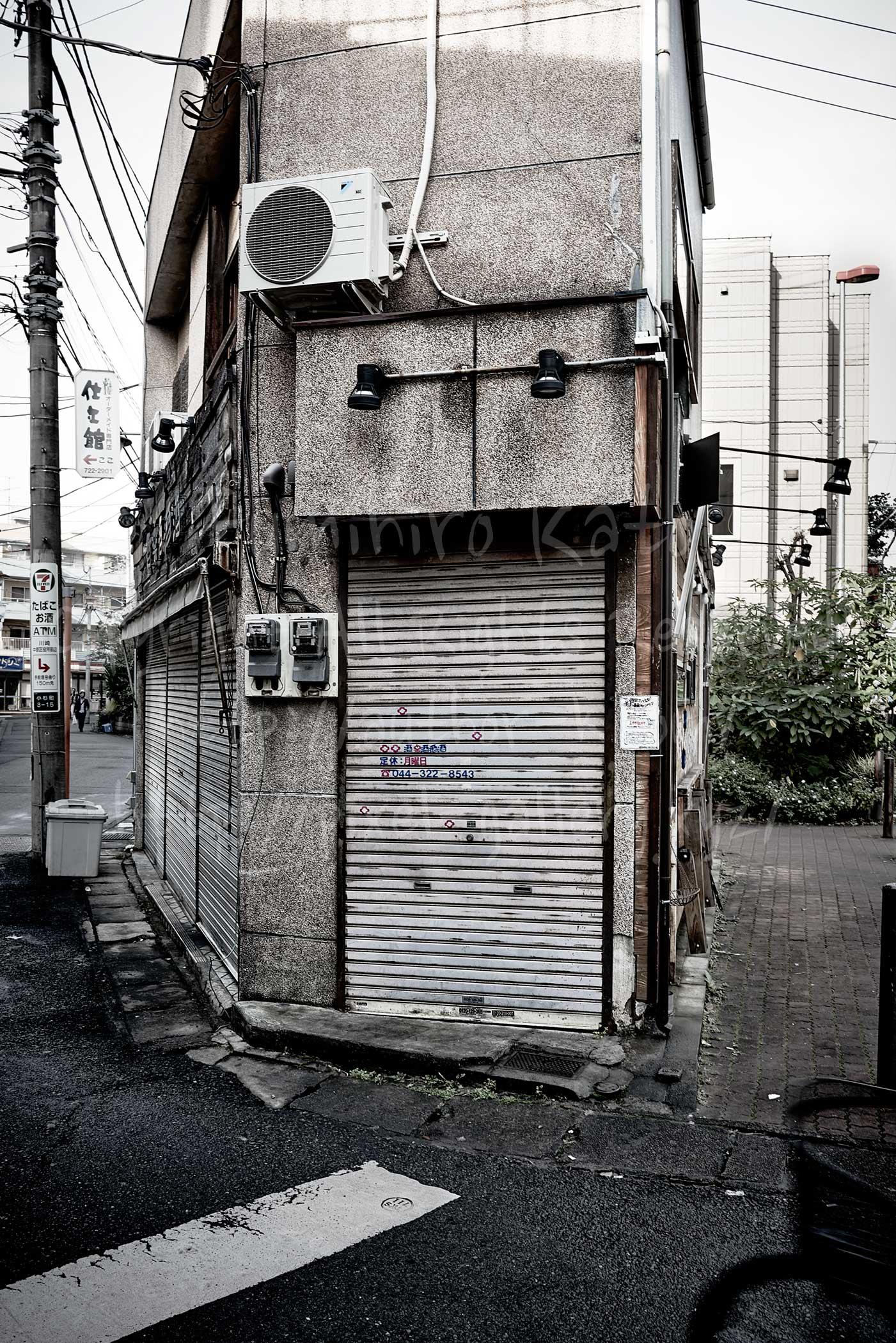武蔵小杉あるいはMUSAKO 2015_19519