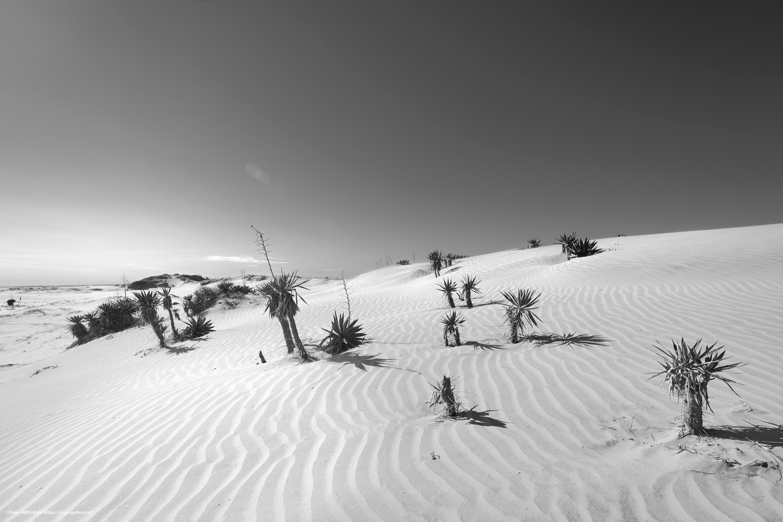 惑星と文明 19-005 時間は砂となって降り積もる