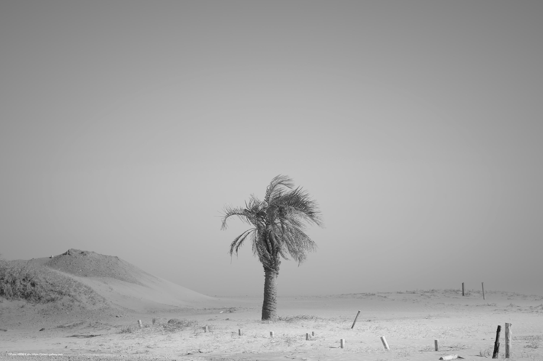 惑星と文明 19-004 時間は砂となって降り積もる