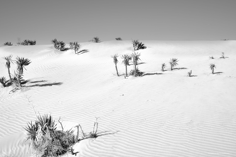 惑星と文明 19-007 時間は砂となって降り積もる