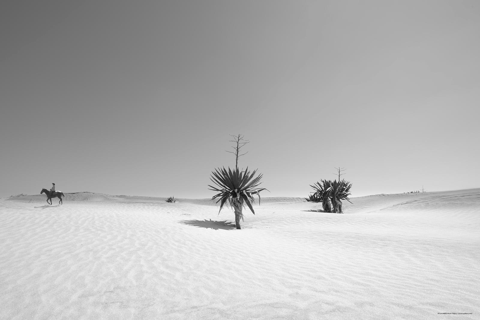 惑星と文明 19-013 時間は砂となって降り積もる