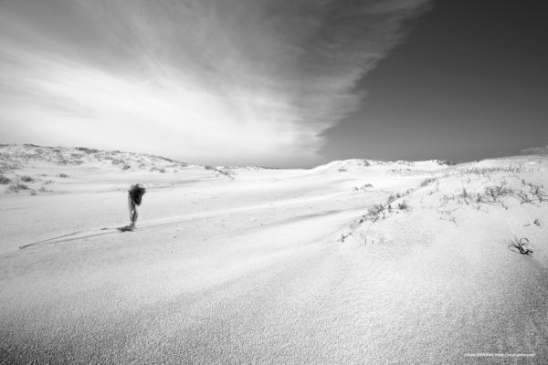 砂景 20-005 風速と光量
