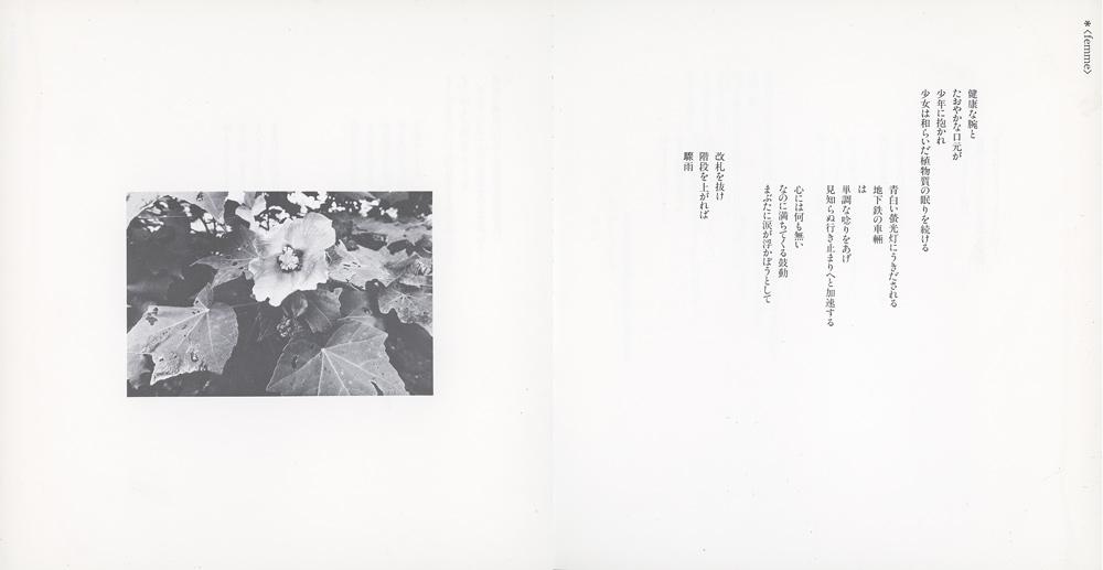 写真詩集「Cadenza」