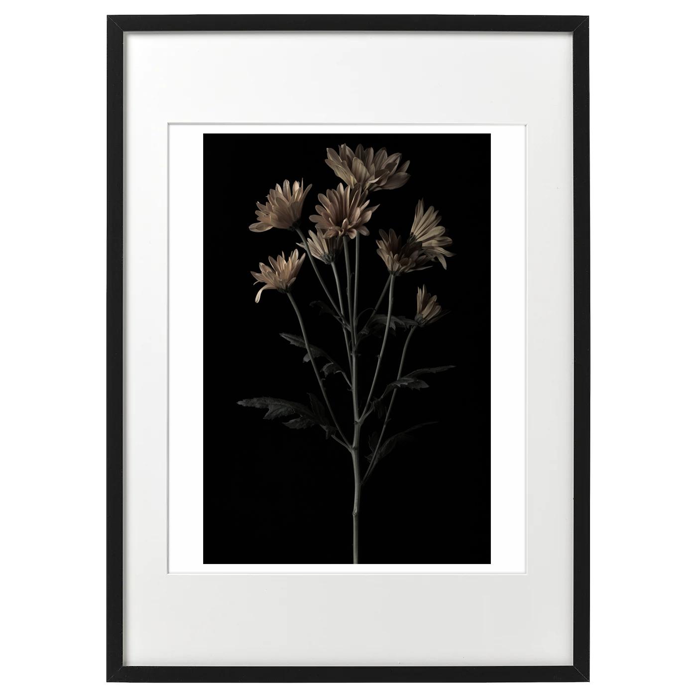 額装イメージ ハナ 2020-036 真鍮の花