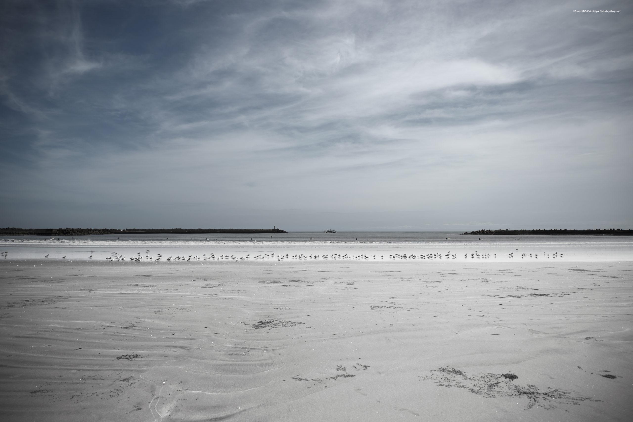 海景 20-016 河口