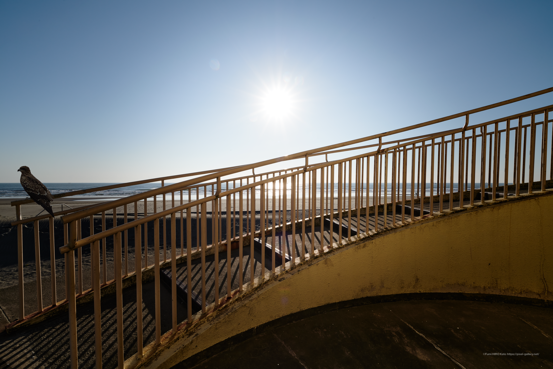 海景 20-036 Milvusと海と階段