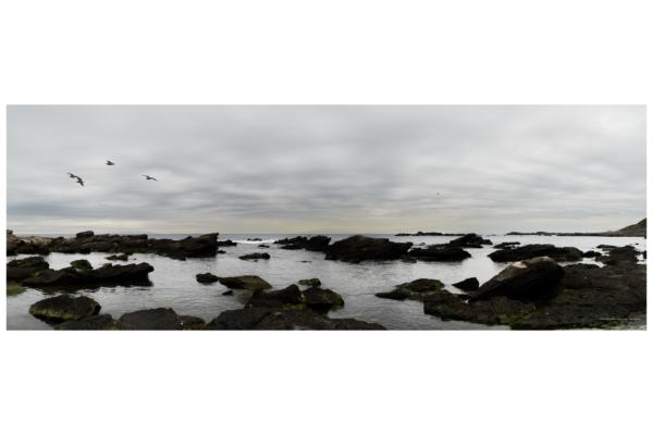 海景 20-042 冬の海