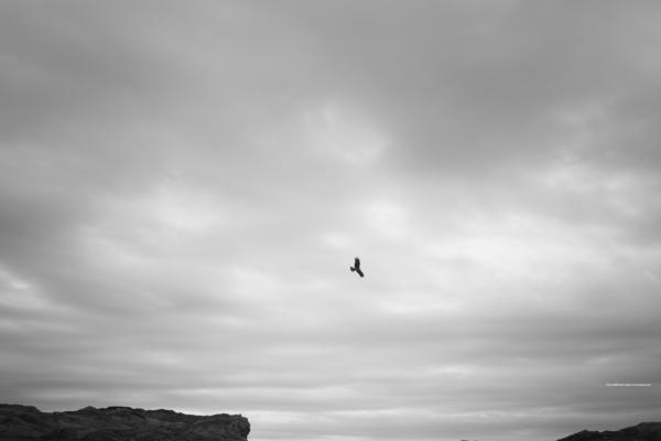 海景 21-002 Milvusと冷たい空