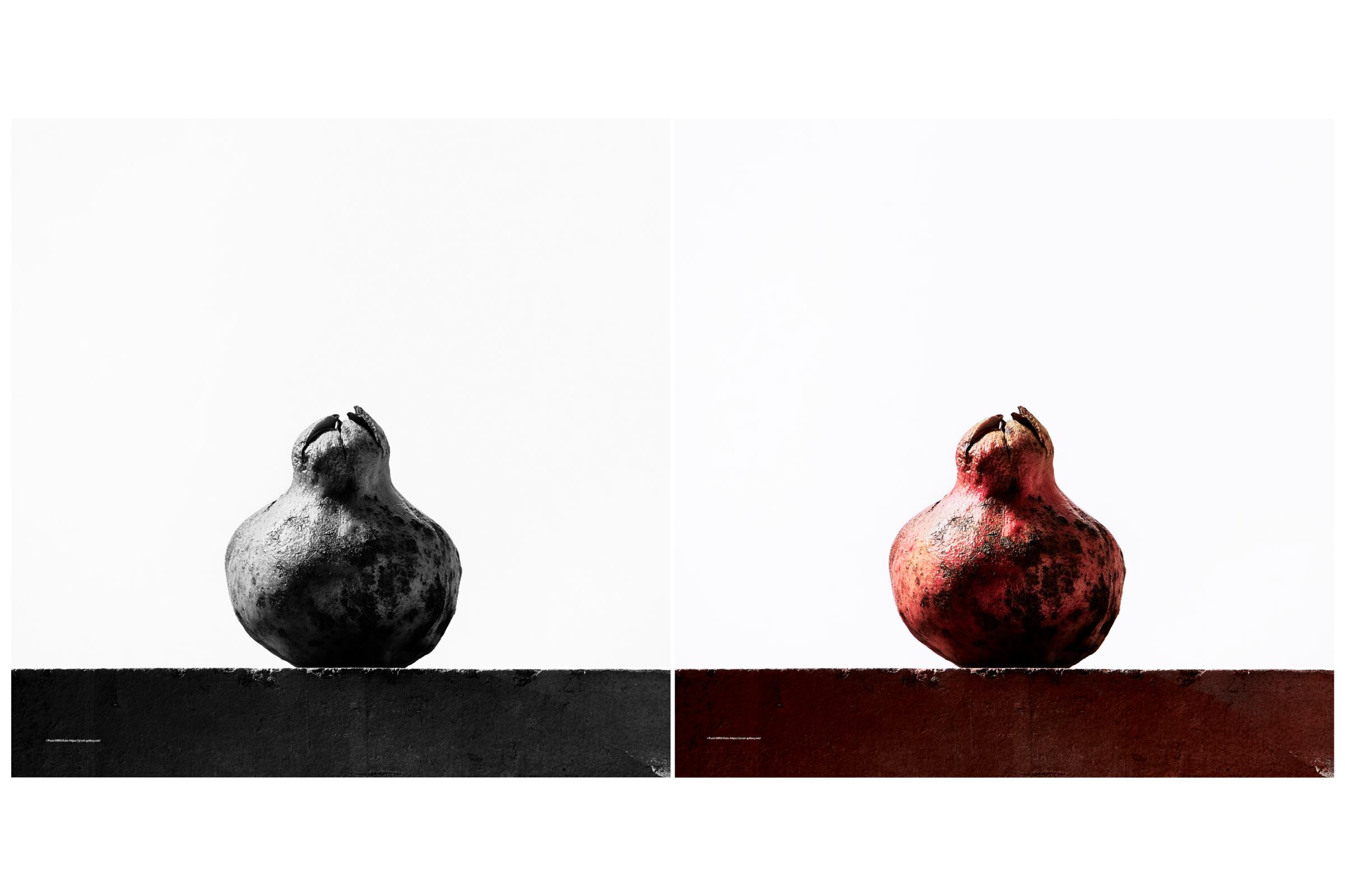 重力 柘榴 黒と赤 2021002
